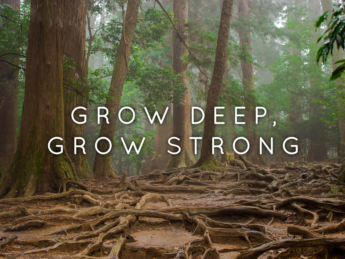 growdeepgrowstrong_fb Job Application Form Training on blank generic, free generic, part time,